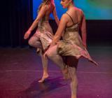 A Magical Christmas_Het Dansatelier 2015-42