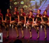A Magical Christmas_Het Dansatelier 2015-78
