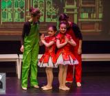A Magical Christmas_Het Dansatelier 2015-87