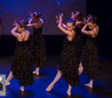 A Magical Christmas_Het Dansatelier 2015-106