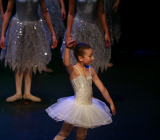 A Magical Christmas_Het Dansatelier 2015-4