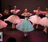 A Magical Christmas_Het Dansatelier 2015-82