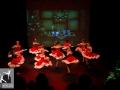 A Magical Christmas_Het Dansatelier 2015-265
