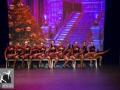 A Magical Christmas_Het Dansatelier 2015-292