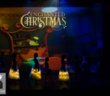 7-Enchanted Christmas_Dansatelier_X-Noize.nl_23-12-2017