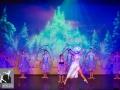 45-Enchanted Christmas_Dansatelier_X-Noize.nl_23-12-2017
