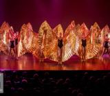 1 Opening Movie Tributes Het Dansatelier by X-Noize-15-LR