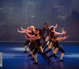 11 Divergent Movie Tributes Het Dansatelier by X-Noize-9-LR