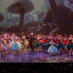 13 Alice in Wonderland Movie Tributes Het Dansatelier by X-Noize-27-LR