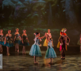 13 Alice in Wonderland Movie Tributes Het Dansatelier by X-Noize-4-LR