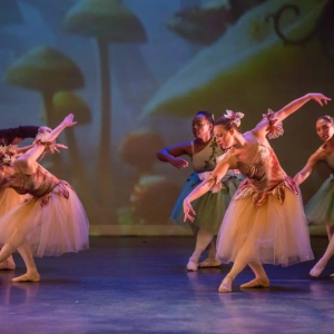 13 Alice in Wonderland Movie Tributes Het Dansatelier by X-Noize-97-LR
