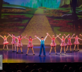 7 The Wizard Of Ozz Movie Tributes Het Dansatelier by X-Noize-26-LR