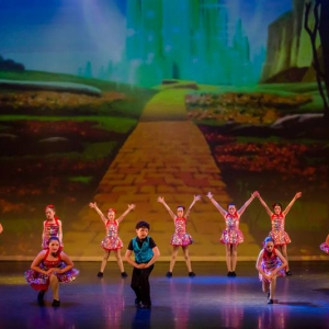 7 The Wizard Of Ozz Movie Tributes Het Dansatelier by X-Noize-68-LR