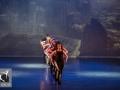11 Divergent  Movie Tributes Het Dansatelier by X-Noize-8-LR