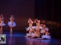 26 Black Swan Movie Tributes Het Dansatelier by X-Noize-22-LR