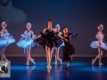 26 Black Swan Movie Tributes Het Dansatelier by X-Noize-40-LR