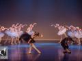 26 Black Swan Movie Tributes Het Dansatelier by X-Noize-51-LR