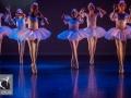 26 Black Swan Movie Tributes Het Dansatelier by X-Noize-56-LR