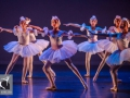 26 Black Swan Movie Tributes Het Dansatelier by X-Noize-57-LR