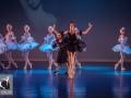 26 Black Swan Movie Tributes Het Dansatelier by X-Noize-63-LR