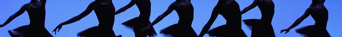 Het-Dansatelier-website-banner